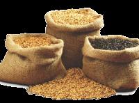 black pearl barley