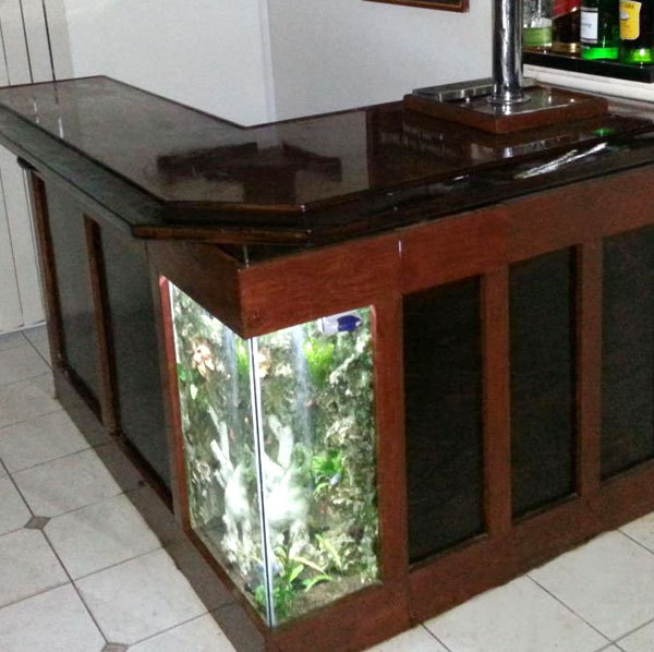 Build Your Own Aquarium Bar - American Homebrewers Association