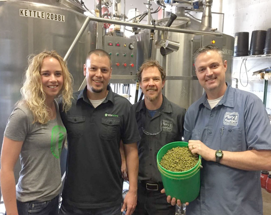Vinny Cilurzo Hops homebrewing