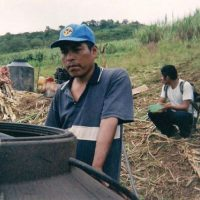 ancient homebrewing mexico