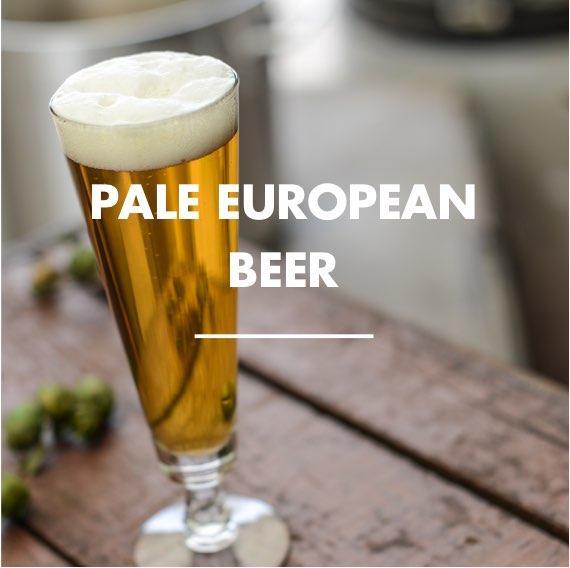 Pale European Beer