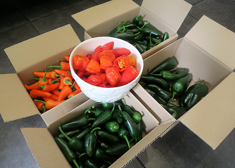 peppers used for hot sauce