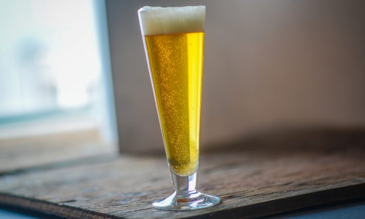 homebrewing lager