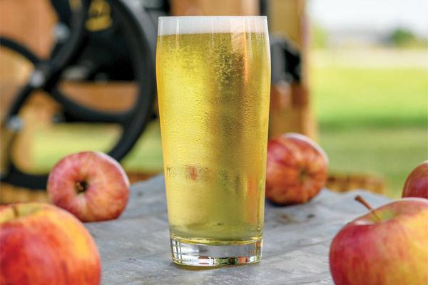 fermented cider
