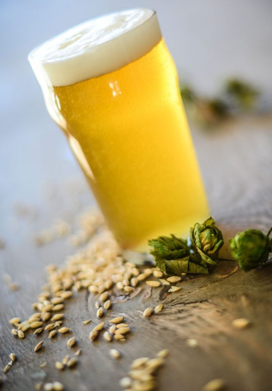 homebrewing-lager